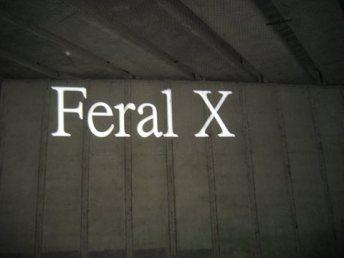 Feral X M25